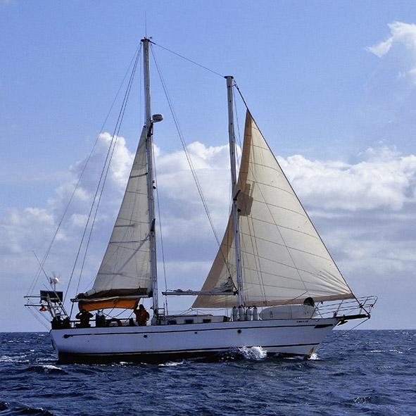 alquiler de barco con patron en caribe